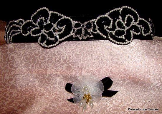 Black Sequin ,Pearls on Velvet Dog Collar