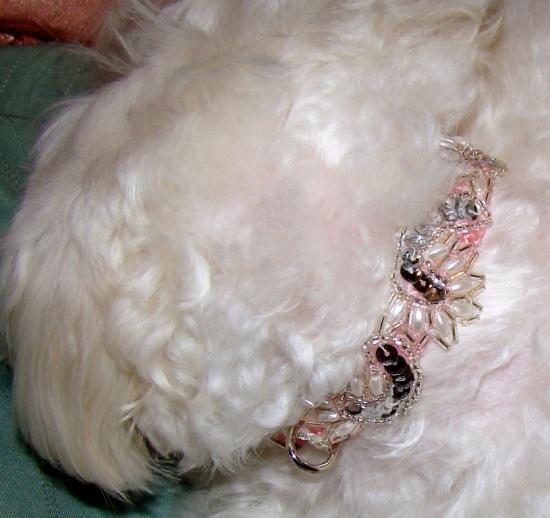 Pearl Curl Luxury Collar