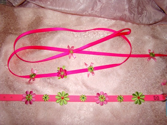 DAISY DELIGHT COLLAR LEASH SET