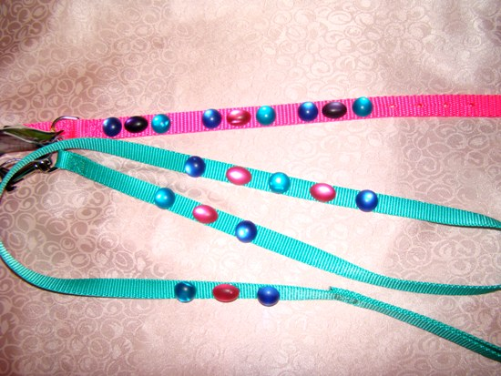Hot Pink Turquoise Lucite Collar Leash Set