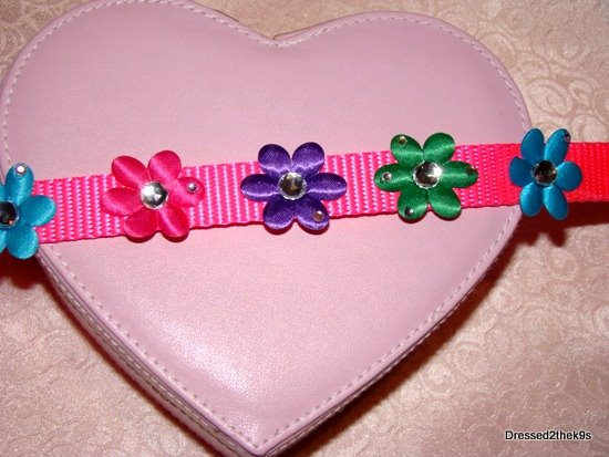 Brite Flower Power Dog Collar