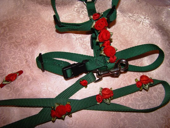 Red Velvet Roses Harness