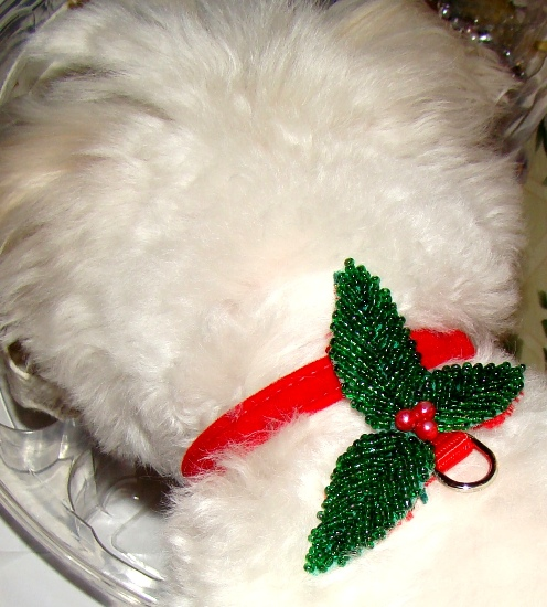Holiday Holly attachment with velvet collar-Christmas collars,Holiday pet collars,Christmas dog cat collars,Holly pet collars,
