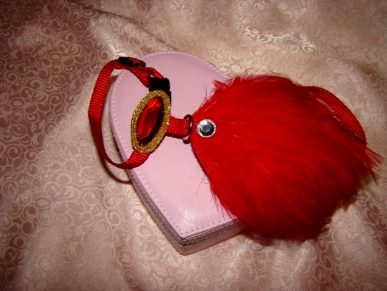 RED FEATHERS FOR FIDO OR FIFI HARNESS