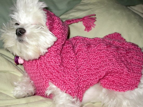 PINK HOODED DOG SWEATER