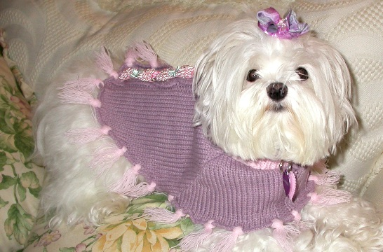 PINK LAVENDER DOG PONCHO SWEATER
